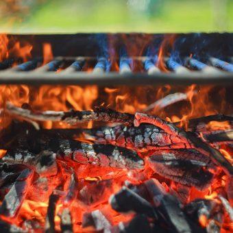 Carbón de Leña Pampa del Infierno 2,5 kg